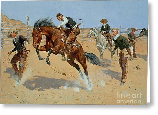 Bucking Horses Greeting Cards - Turn Him Loose Greeting Card by Frederic Remington