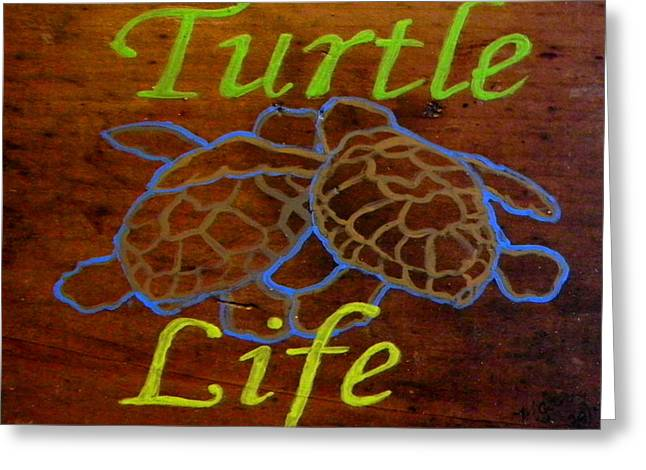 Melbourne Beach Greeting Cards - Turtle sign Greeting Card by M Gilroy