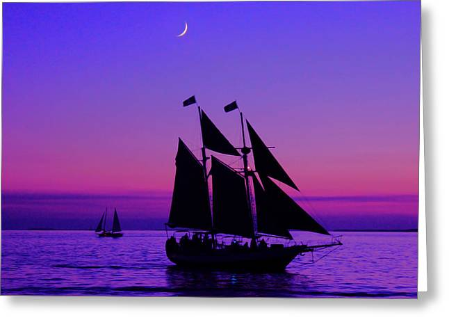 Sea Moon Full Moon Greeting Cards - Under Full Sail Greeting Card by Iryna Burkova