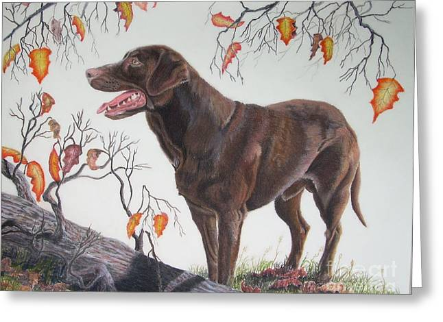 Chocolate Lab Pastels Greeting Cards - Untitled Greeting Card by John Huntsman