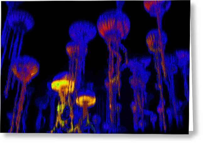 Sea Life Digital Art Greeting Cards - Up from the Deep Greeting Card by David Lee Thompson