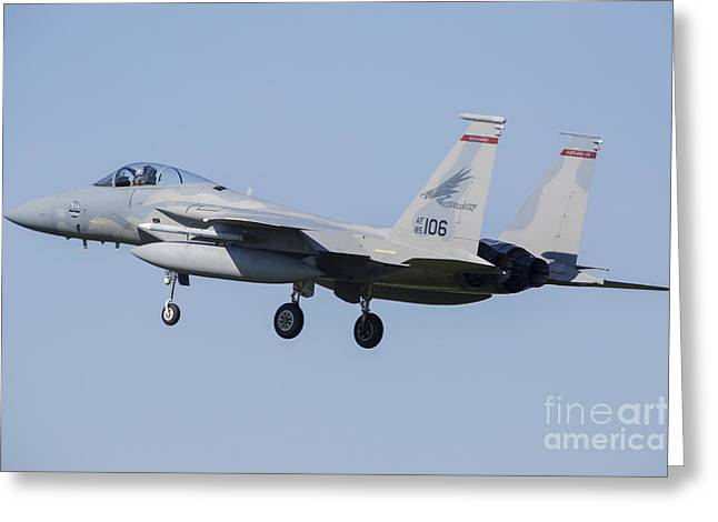 U.s. Air Force F-15c During Nato Greeting Card by Timm Ziegenthaler