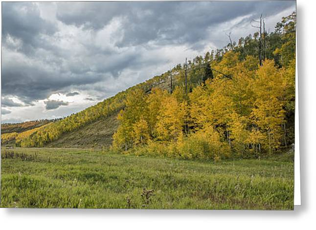 Colorado Artwork Greeting Cards - Visual Rapture Greeting Card by Jon Glaser