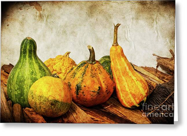 Pumpkins Mixed Media Greeting Cards - Vegetable II Greeting Card by Angela Doelling AD DESIGN Photo and PhotoArt