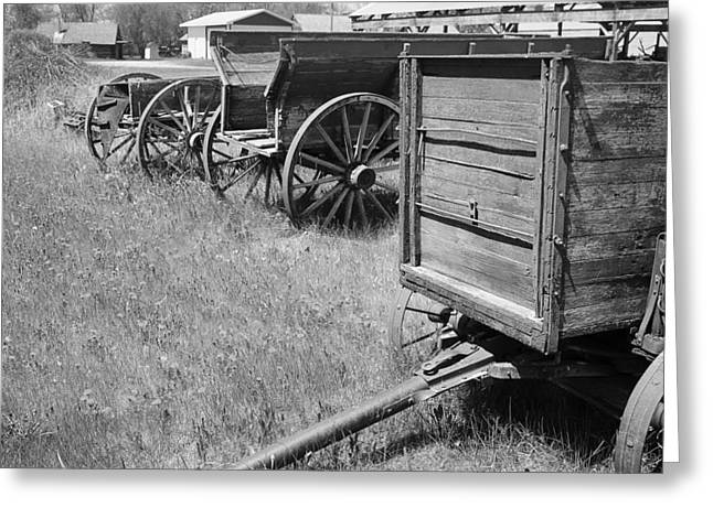 D.w Greeting Cards - Vintage Farm Wagons in Row Greeting Card by Donald  Erickson