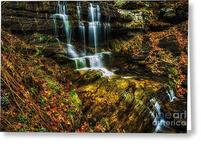 Violets And Waterfall  Greeting Card by Thomas R Fletcher