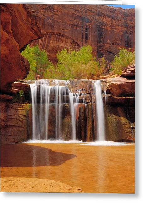 Escalante National Monument Greeting Cards - Waterfall in Coyote Gulch Utah Greeting Card by Utah Images