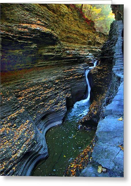 Watkins Glen Gorge Greeting Card by Jessica Jenney