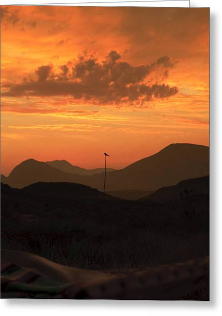 Terlingua Texas Greeting Cards - Welcome the Day Greeting Card by Clyde Replogle