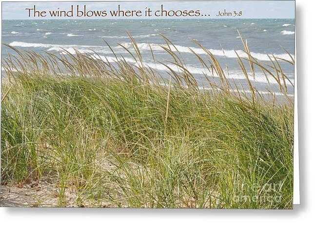Greeting Cards - Where the Wind Blows Greeting Card by Ann Horn