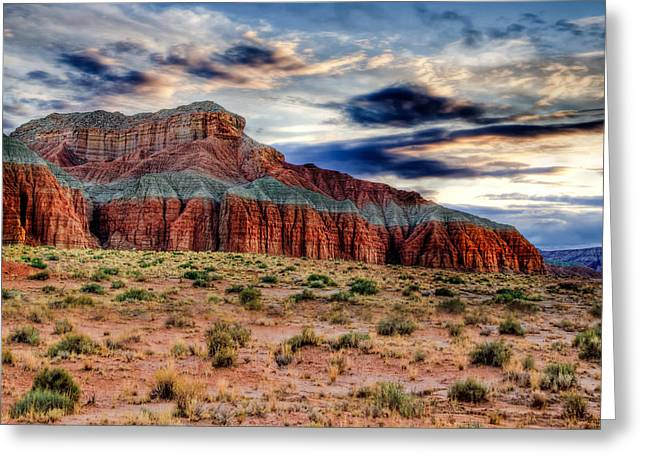 Wild Horses Greeting Cards - Wild Horse Mesa Greeting Card by Utah Images
