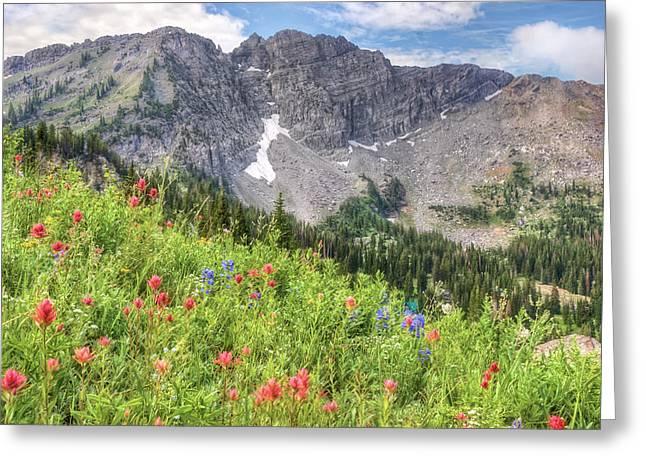 Spectacular Greeting Cards - Wildflowers in Albion Basin Utah Greeting Card by Utah Images