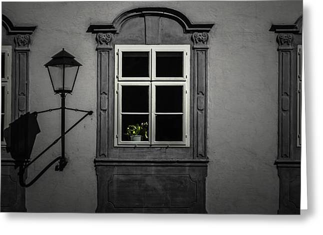 Window Garden Greeting Card by Chris Fletcher