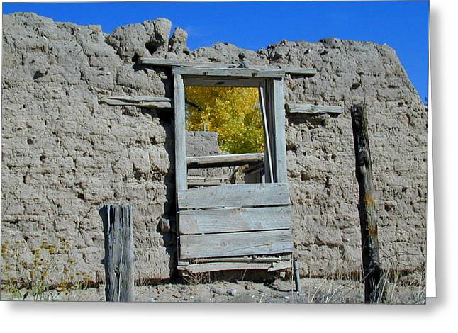Window In Autumn Greeting Card by Joseph R Luciano