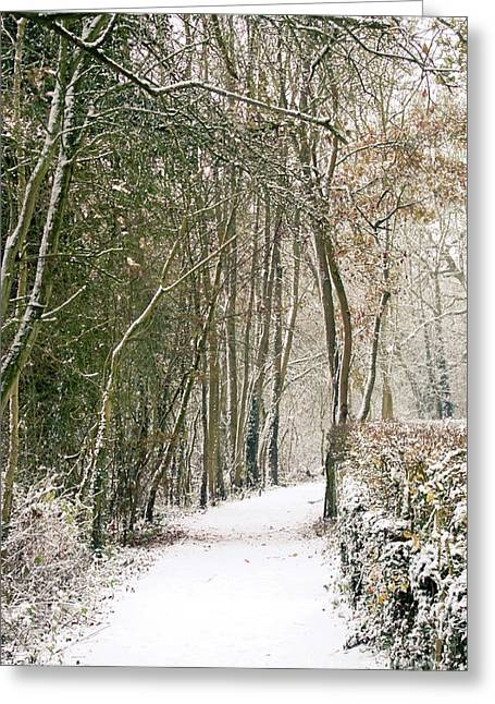 England Landscape Greeting Cards - Winter Journey Greeting Card by Andy Smy