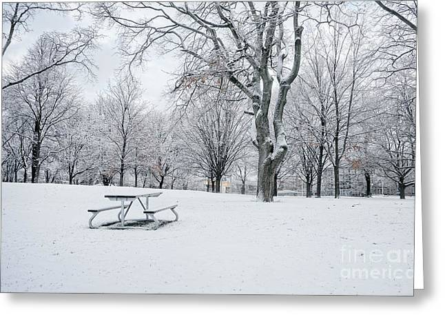 Snow Scene Landscape Greeting Cards - Winter Park Greeting Card by Charline Xia