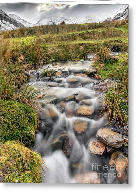 Winter Stream Greeting Card by Adrian Evans