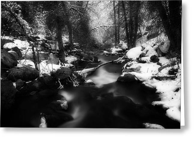 Snowy Brook Greeting Cards - Winter Stream Greeting Card by Daniel Bowman