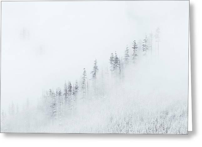 Winter Veil Greeting Card by Mike  Dawson