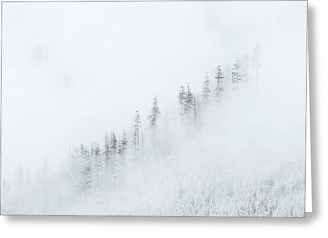 Blanket Photographs Greeting Cards - Winter Veil Greeting Card by Mike  Dawson