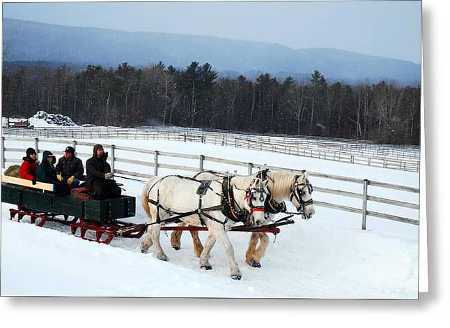 Winter Wonderland Greeting Card by James Kirkikis