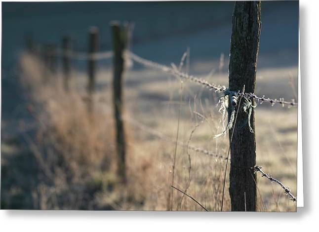 Snow Covered Field Greeting Cards - Wooden posts Greeting Card by Bernard Jaubert