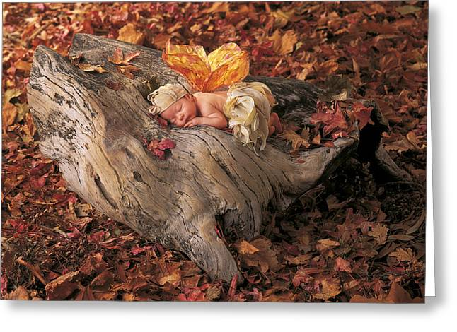 Fairies Photographs Greeting Cards - Woodland Fairy Greeting Card by Anne Geddes