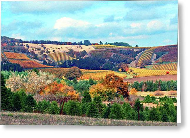 Blue Grapes Greeting Cards - Yamhill Valley Vineyards Greeting Card by Margaret Hood
