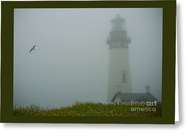 Sea Birds Greeting Cards - Yaquina Head Lighthouse Greeting Card by Nick  Boren