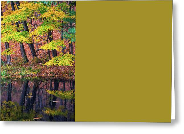 Yellow Autumn Greeting Card by Karol Livote