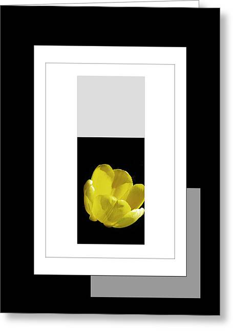 Digital Installation Art Greeting Cards - Yellow Tulip 2 Of 3 Greeting Card by Tina M Wenger
