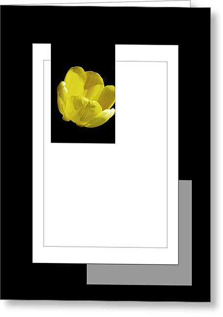 Installation Art Greeting Cards - Yellow Tulip 3 Of 3 Greeting Card by Tina M Wenger
