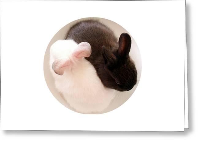 Yang Greeting Cards - Yin Yang Bunnies T Shirt Greeting Card by Valerie Reeves