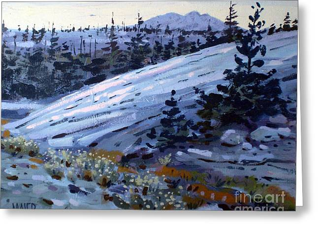 Granite Greeting Cards - Yosemite High Country Greeting Card by Donald Maier
