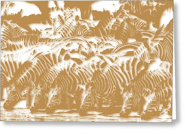Mount Kilimanjaro National Park Greeting Cards - Zebra 3 Greeting Card by Joe Hamilton