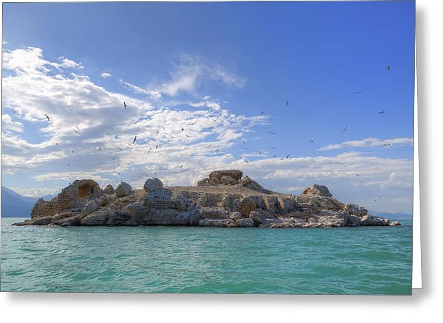 Seabirds Photographs Greeting Cards - Lake Beysehir - Turkey Greeting Card by Joana Kruse