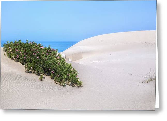 Meds Greeting Cards - Patara Beach - Turkey Greeting Card by Joana Kruse