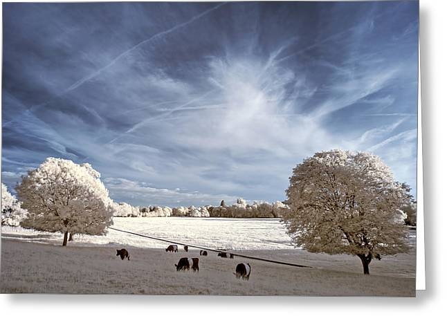 Field. Cloud Greeting Cards - Stunning beautiful unique infra red landscape with false color  Greeting Card by Matthew Gibson