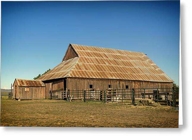 Wooden Building Greeting Cards - The Old Barn Greeting Card by Mountain Dreams