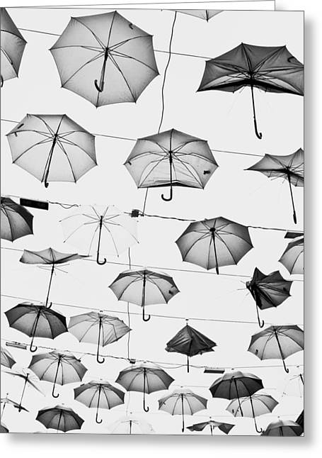Editorial Greeting Cards - Umbrellas Greeting Card by Tom Gowanlock