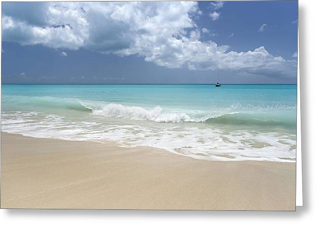 Oceans 11 Greeting Cards - 11 Mile Beach Barbuda Greeting Card by Bryan Allen