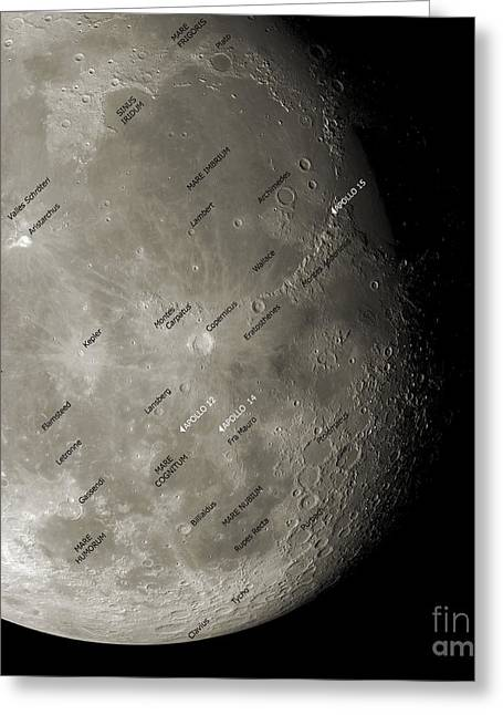 Label Greeting Cards - The Moon From Space, Artwork Greeting Card by Detlev van Ravenswaay