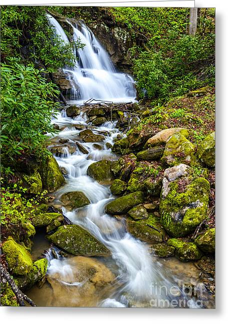 West Fork Greeting Cards - West Virginia Waterfall  Greeting Card by Thomas R Fletcher