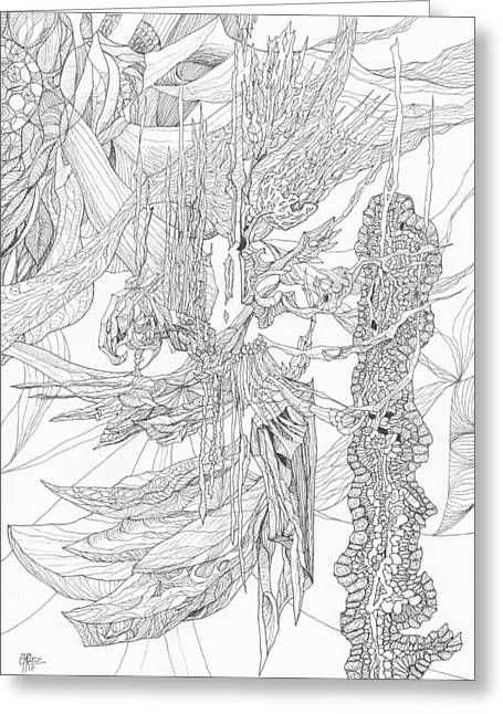 Organic Drawings Greeting Cards - 1110-7 Greeting Card by Charles Cater