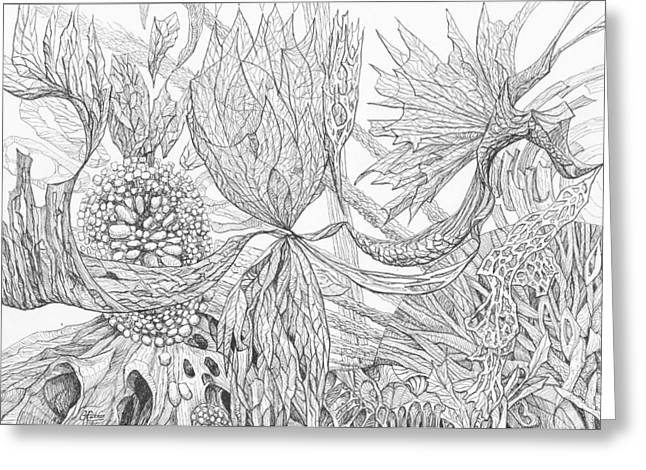 Organic Drawings Greeting Cards - 1110-8 Greeting Card by Charles Cater