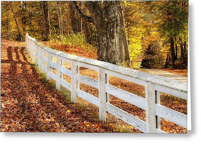 New England Lights Greeting Cards - Autumn Series Greeting Card by HD Connelly