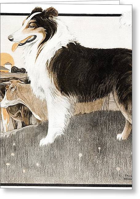 Watch Dog Greeting Cards - Cover Of Country Gentleman Agricultural Greeting Card by Remsberg Inc