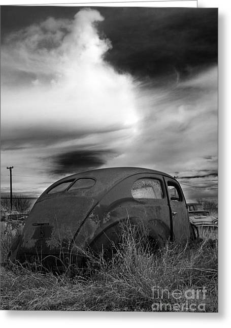 Rally Greeting Cards - Untitled  Greeting Card by Jeremy Holmes