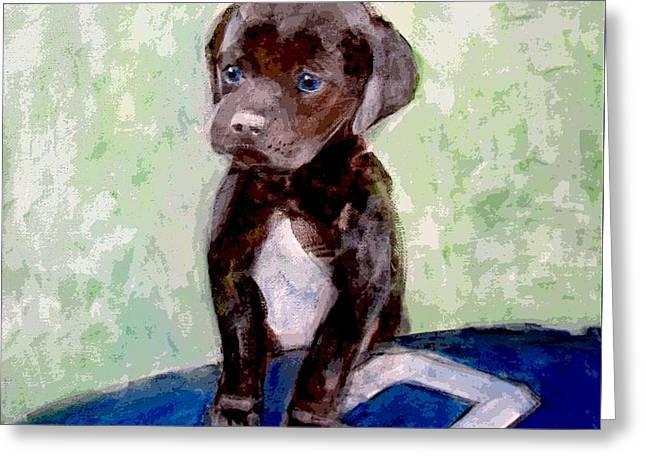 Chocolate Lab Greeting Cards - 12th Dog Greeting Card by Kazumi Whitemoon
