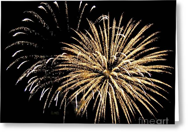 Panoramic Ocean Greeting Cards - Fireworks Greeting Card by Brent Parks